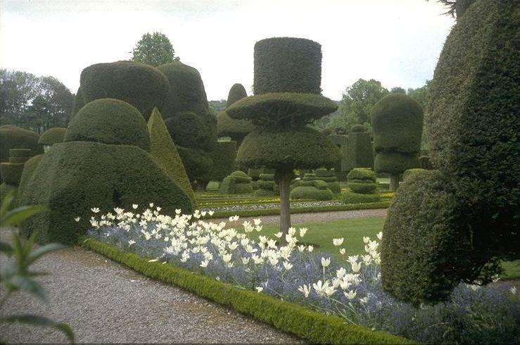 gardentopiary